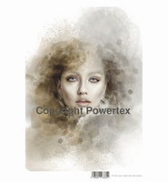 Powertex laserprint 384 The Ice Queen color A3